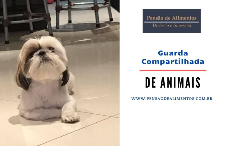 GUARDA COMPARTILHADA ANIMAIS